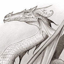 le_dragon_druiz_brucero_glenat