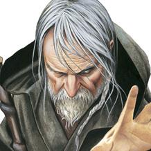 Merlin - galerie - BRUCERO